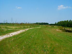aanleg-arboretum-2005