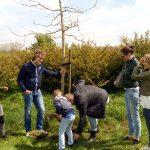 Overdracht herdenkingsboom aan nabestaanden van Fop Ganzeveld
